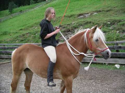GROUP RIDES for advanced horseback riders